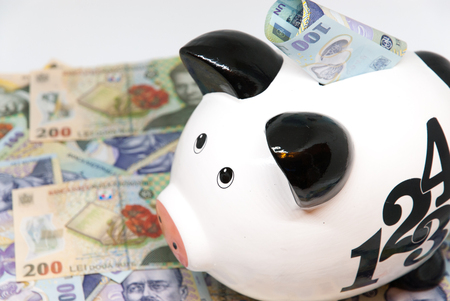 piggy bank and romanian currency lei ron savings for pension retirement concept