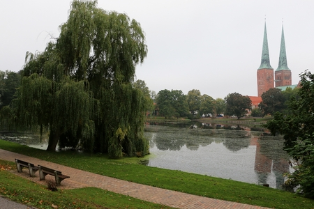 beautiful romantic place at a small sea with a weeping willow and a church in the background at a rainy day