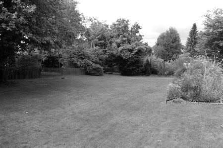black and white of a beautiful garden with a grass and a flower bed Reklamní fotografie
