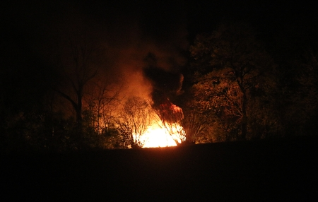 large fire is burning in the forest at night Stock Photo