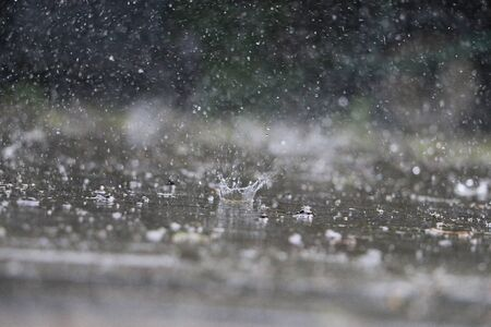 Rain is falling on the street Banco de Imagens