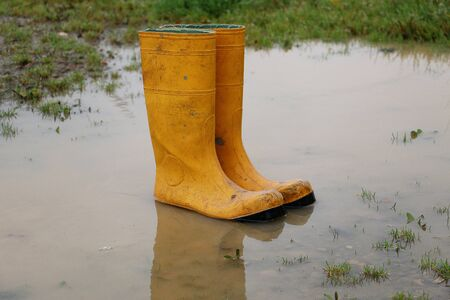 A pair of yellow rubber boots standing in a puddle on a rainy day Stok Fotoğraf