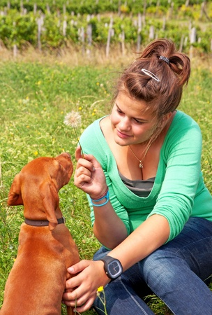 Happy young girl is playing her dog Stock Photo - 12053728