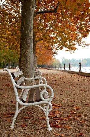 Promenade at Lake Balaton in autumn, Hungary (Balatonfüred) Stock Photo - 12025168