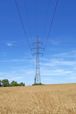 High tension line in wheat field 3 Stock Photo - 12054159