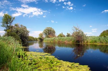 River Zala at Lake Balaton,Hungary Stock Photo - 14486149