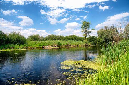 River Zala at Lake Balaton, Hungary Stock Photo - 14486151
