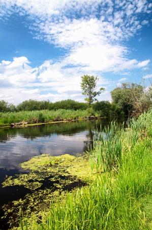 River Zala at Lake Balaton, Hungary Stock Photo - 14486150