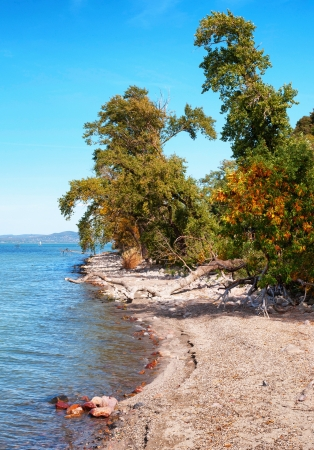 Landscape at Lake Balaton in autumn,Hungary