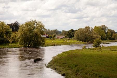 River in summer, Ireland