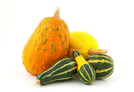 Colorful pumpkins on white background