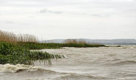balaton: Stormy wind at Lake Balaton, Hungary