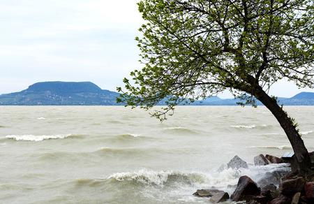balaton: Stormy Lake Balaton, Hungary Stock Photo