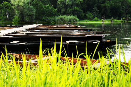 Flat boats on the backwater in summer, Hungary