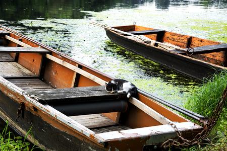 Flat boats on the backwater, Hungary Stock Photo
