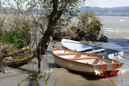 Wild coast at Lake Balaton, Hungary