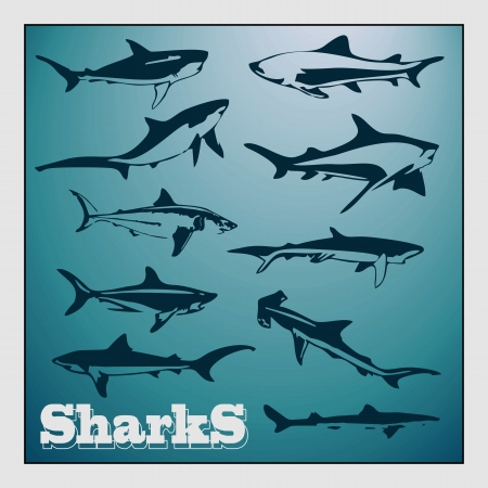Set of stylized shark, plus background sea depth Vector