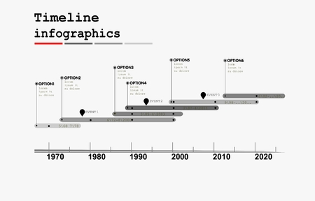 Monochrome Timeline Infographic with diagrams and graphics in flat design style Vector