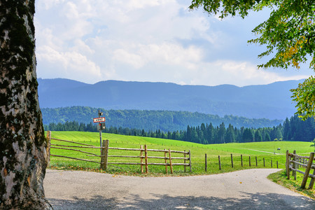 Bavarian Countryside with Old Lane, Fields and Mountains