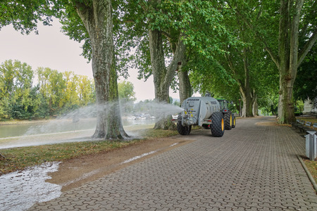 Extreme measures in Germany to combat drought conditions putting very old trees at risk - City water trucks flooding the promenade in Koblenz, Germany - Aug 2015