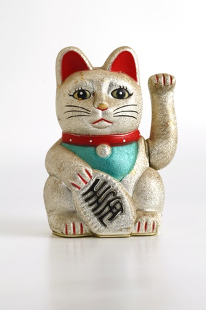 fortune cat: Lucky Cat in White Background