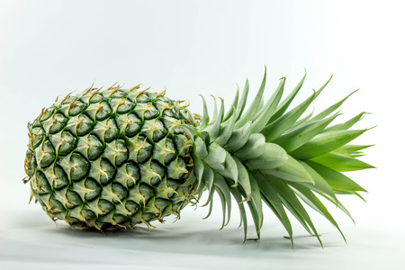 studioshot: Pineapple style Stock Photo