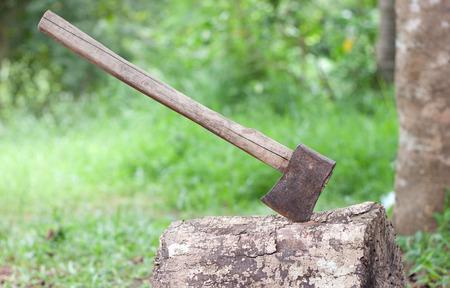 splitting up: Axe in wood