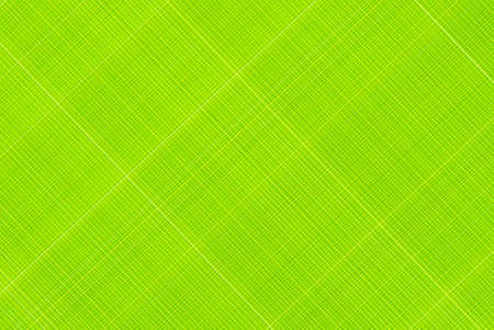 pattern stripes photo
