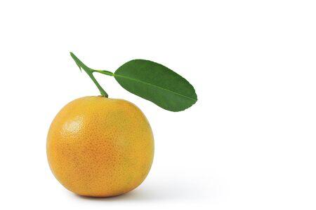 Orange fruit with orange leaves.