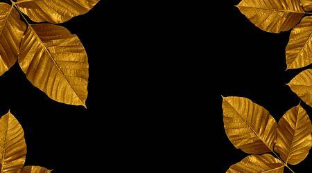 Golden painted  leaves creative  on dark black background  Stock fotó