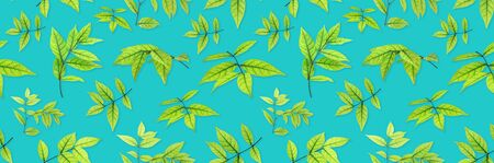 green leaves pattern on blue background. flat lay.
