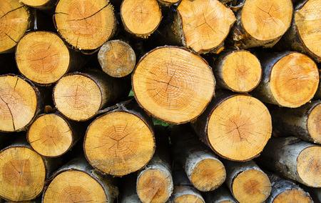 Timber background Stock Photo