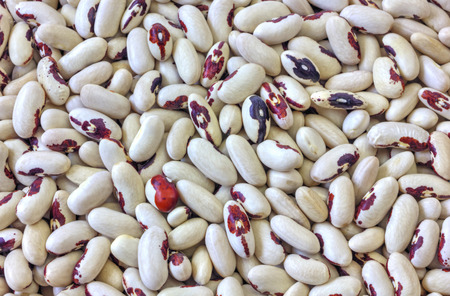haricot: Colorful haricot beans background