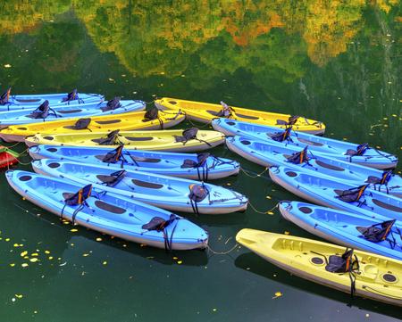 fibra de vidrio: Kayaks para alquilar en el río