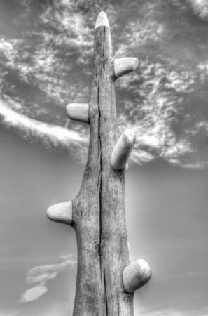 Beautiful wooden sculpture in black and white Archivio Fotografico - 133516526