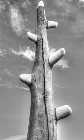 Beautiful wooden sculpture in black and white Archivio Fotografico - 133516527