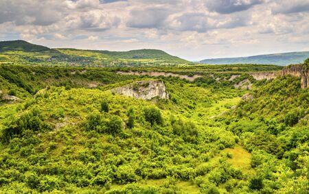 Beautiful summer landscape in mountain range