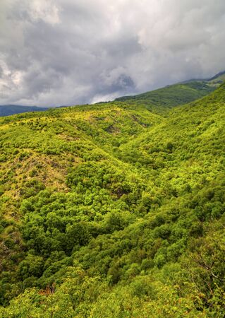 Beautiful summer landscape in the mountain range