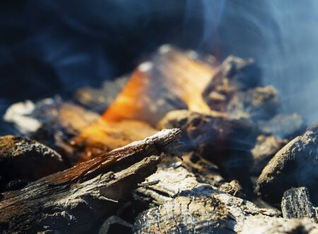 Burning wood and spectacular flames close up view