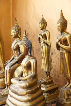 Standing gold buddha statues in a temple, Thailand Stock Photo - 17346574