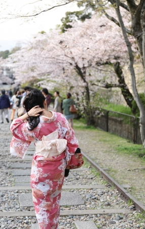 Japanese girl in traditional dress called Kimono with Sakura blossom photo