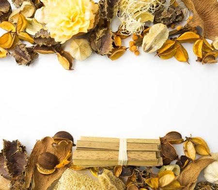 flores secas: Secado florece el marco con el espacio en blanco para cualquier texto