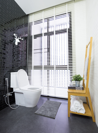 Interior of modern contemporary bathroom with toilet photo