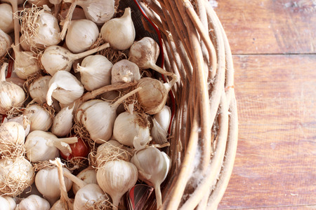 un cook: garlic in basket Stock Photo