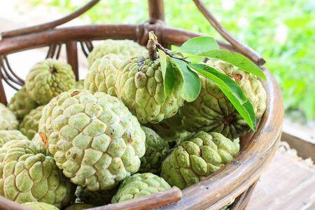 chirimoya: chirimoya en la cesta