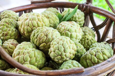 custard apple: Thai fruit custard apple in basket
