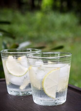 natura: cold water with ice and lemon with natura background Stock Photo