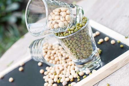 mung bean: mung bean and soy bean Stock Photo