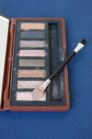 eye shadows: Used brown eye shadows of makeup artist.