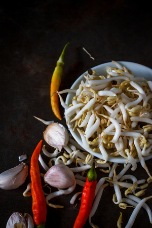 soja: mung bean, or bean sprouts used in Asian cuisine ,the energy boosting vegetable, good for health, fresh and organic put on grunge tray, still life image dark tone